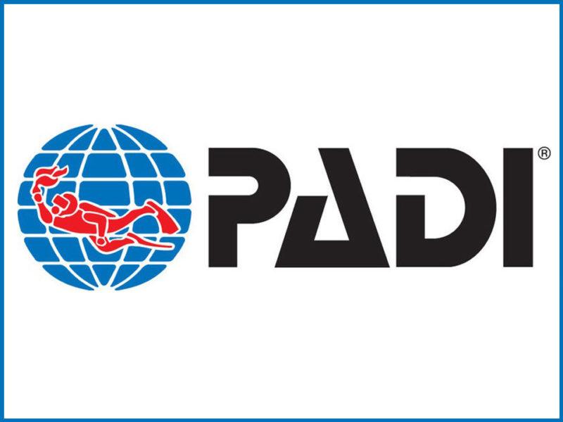 ¿Qué es PADI?